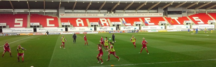 Wales v Ukraine, Llanelli, World Cup 2105 qualifier