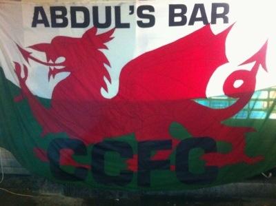 Wales v Belgium, 2014