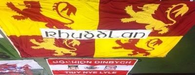 Belgium v Wales, 2014